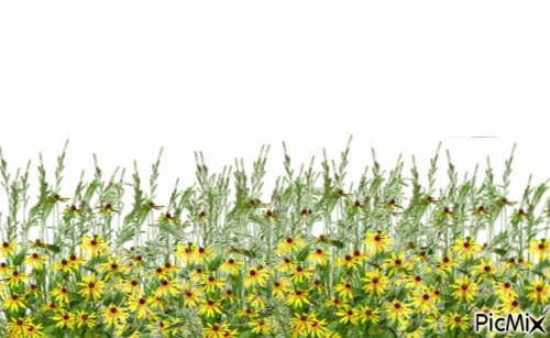 Yellow Flowers by Elisa Walter (eBook) - Lulu