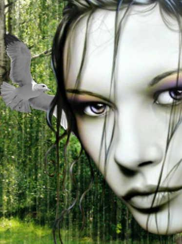 http://img1.picmix.com/output/pic/original/8/6/7/8/2638768_61c62.jpg