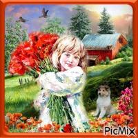 coquelicots Fleurs
