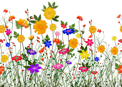 Kaz_Creations Paysage Scenery Flowers Deco