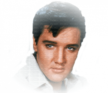 Art additionally Elvis Presley also Roses And Pink IPhone Wallpaper ...