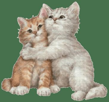 round cat carrier
