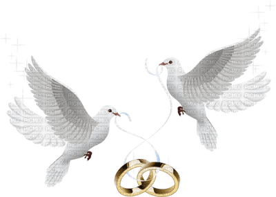 doves wedding rings deco  doves wedding picmix clipart wedding rings png clip art wedding rings intertwined