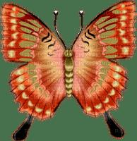 Kaz_Creations Deco Butterflies Butterfly Colours
