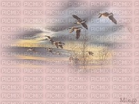 minou-bird-oiseau-uccello-fågel-pink-rose-rosa- background-fond-sfondo-bakgrund