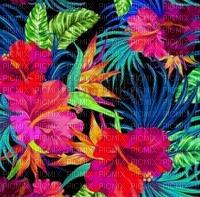 loly33 fond fleur tropique