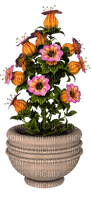 Kaz_Creations Deco Flowers Flower Colours Plant Vase