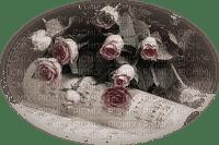 minou-pink-rosa-rosor-rose-roses-flower-blomma-fiori-fleur