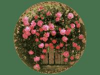 tube rose