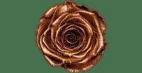 Chocolate - Rose / Marina Yasmine