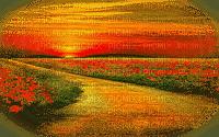 paysage-landscape-scenery-sunset-field poppies Blue DREAM70