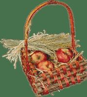 autumn_automne_fruits_pommes_apples _fruits_fruit basket_BlueDREAM 70