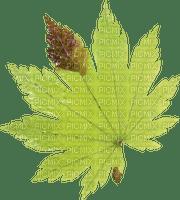 Kaz_Creations Deco Leaves Colours