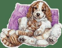 Chien et chat.S