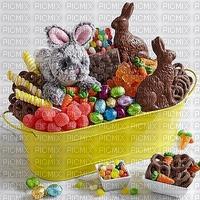 image encre dried fruit bonbons gâterie lapin chocolat