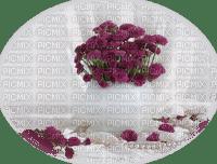 minou-purple-lila-viola-flower-blomma-fiori-fleur
