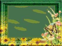 image encre bon anniversaire color effet fleurs papillon tournesol nature edited by me
