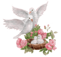 soave deco flowers rose dove bird vintage White pink