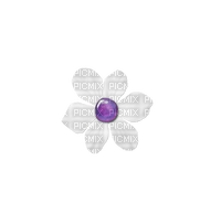 minou-flower-fleur-fiore-blomma-purple-violet-viola-lila