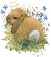 Kaz_Creations Easter Deco Bunny Rabbit