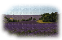 paysage  landscape-scenery-lavender field lavande-Blue DREAM 70
