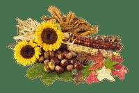 automne_autumn_fleur_flower_decoration_BlueDREAM70