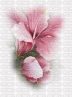 chantalmi fleur rose