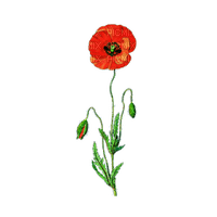 fleur HD