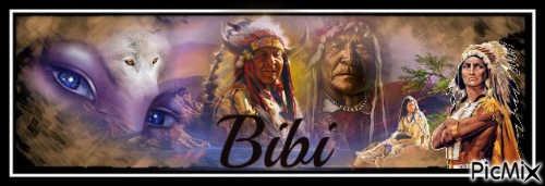 Bannière indien-Bibi