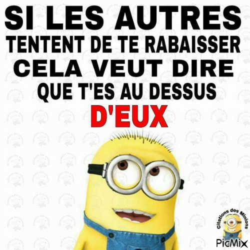 Citations Des Minions Picmix
