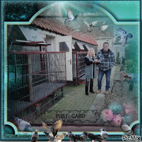 ike avec pigeonnier et homme 💞