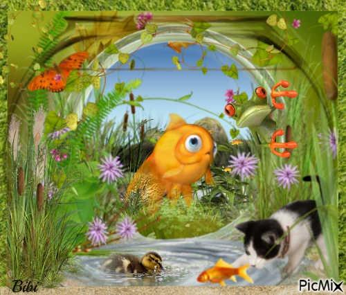Les amis de l'étang