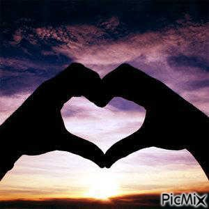 Love ................................