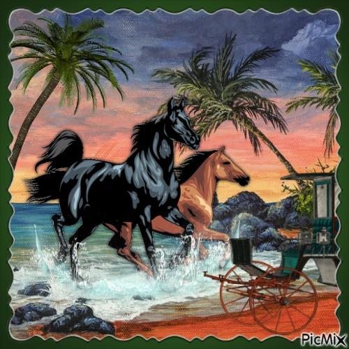 Pferde in besonderer Umgebung