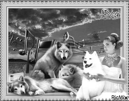 Princesse et loups