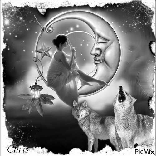 La lune et les loups