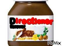Directioner forever