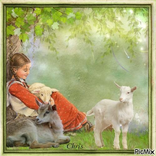 La petite Sophie et ses chèvres
