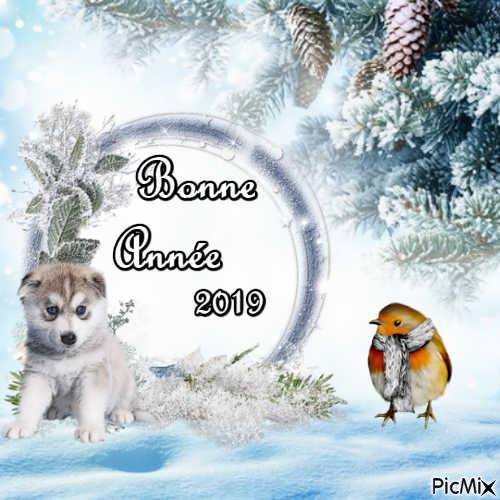 BONNE ANNEE 2019