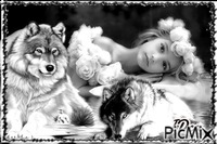 Belle et les loups