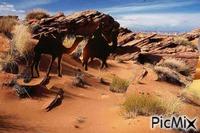 u pustinji