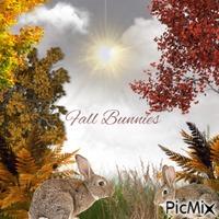 Fall Bunnies