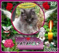 RIP PATAPOUF