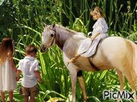 Les enfants et le cheval
