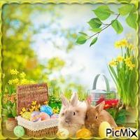 Frühling printemps spring easter
