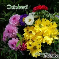 October.! eikones.top
