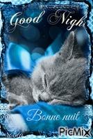 Bonne nuit beau rêve