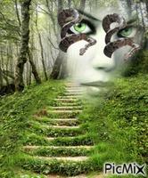 femme aux yeux de serpents