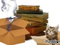 Cajas y libros