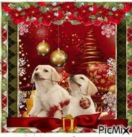 Joyeux Noël les toutous